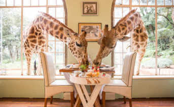 Giraffe Manor Hotel